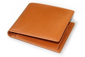 S7532 COIN WALLET / BRIDLE NEWTON